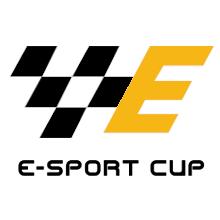 Powiat Brzeski E-Sport Cup