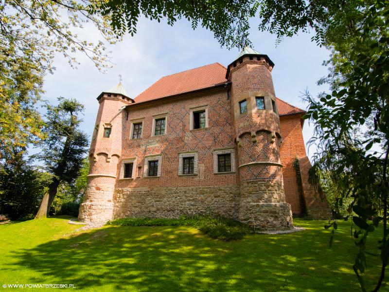 Zamek w Dębnie